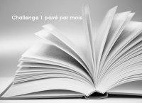 http://deslivresdeslivres.wordpress.com/2014/06/05/challenge-1-pave-par-mois/